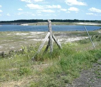 Impression aus der Lausitz: See